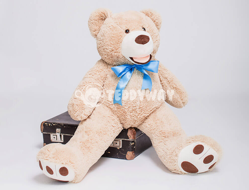 Teddy Bear in suitcase - TeddyWay