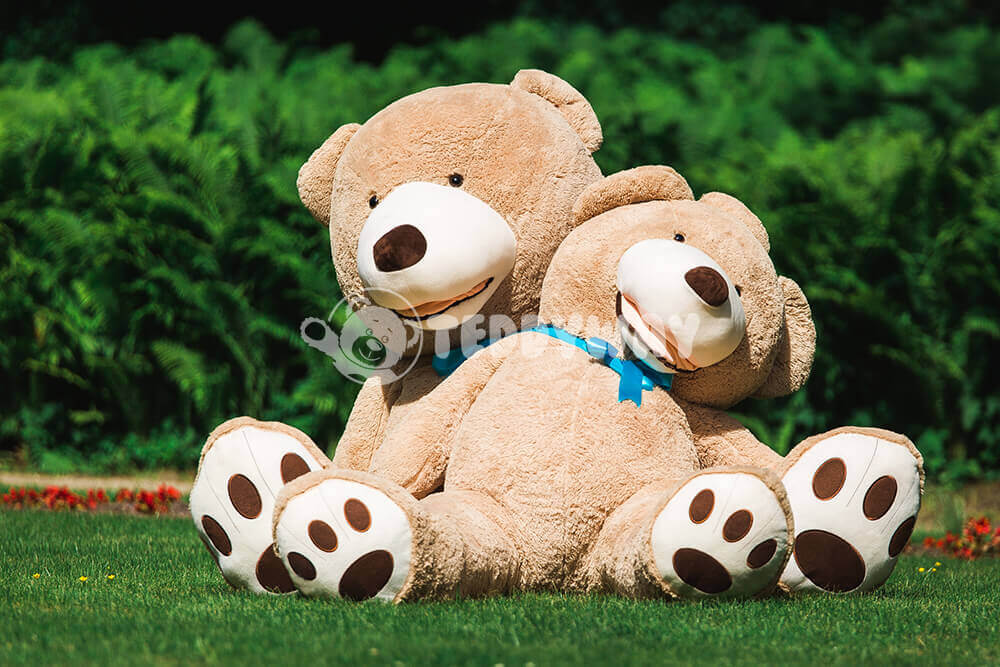 Teddy bears in the grass - TeddyWay